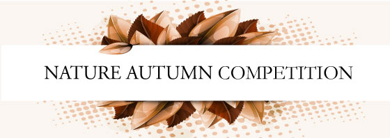 autumn-comp